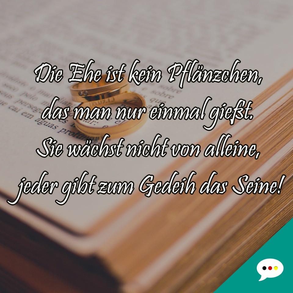 Zitate und Spruchbilder   Deutsche Sprüche XXL
