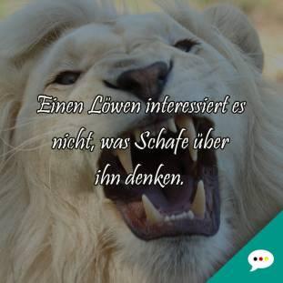 Schöne Spruchbilder Deutsche Sprüche Xxl
