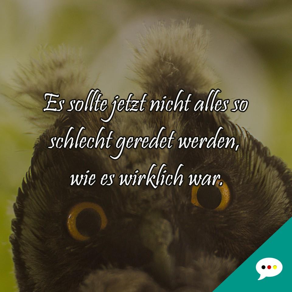 Lustige Und Intelligente Spruchbilder Deutsche Spruche Xxl